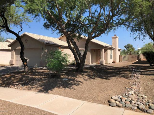 2084 W Cholla Estate Drive, Tucson, AZ 85704 (#21822134) :: Long Realty - The Vallee Gold Team
