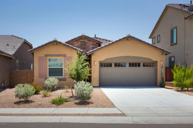 11450 E Desert Raptor Loop, Tucson, AZ 85747 (#21822159) :: Long Realty - The Vallee Gold Team