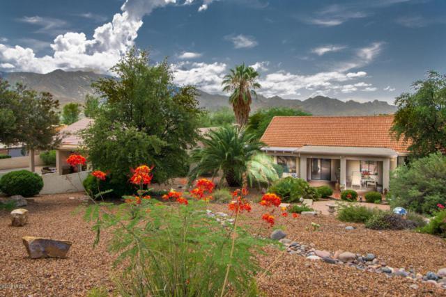 63860 E Orangewood Lane, Tucson, AZ 85739 (#21822173) :: RJ Homes Team