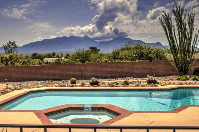 565 W Paseo Potrerro, Green Valley, AZ 85622 (#21822263) :: Long Realty Company
