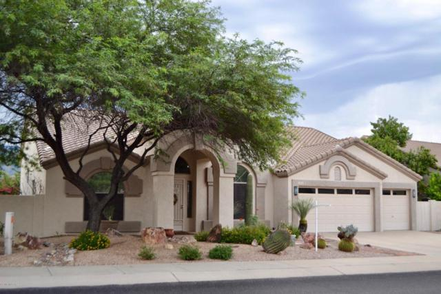 13022 N Whitlock Canyon Drive, Oro Valley, AZ 85755 (#21822269) :: The Local Real Estate Group | Realty Executives