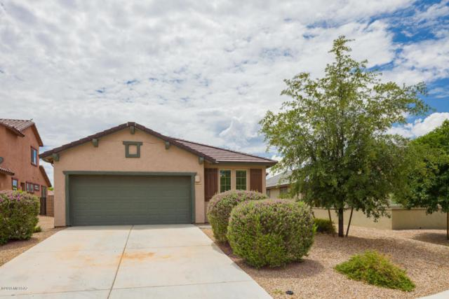 10466 S Cutting Horse Drive, Vail, AZ 85641 (#21822277) :: Keller Williams