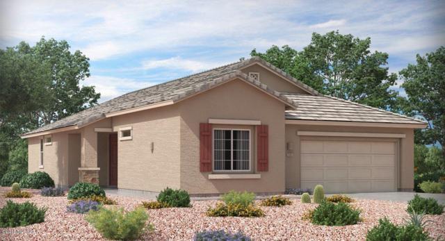 12041 N Gadwall Drive N, Marana, AZ 85653 (#21822282) :: RJ Homes Team