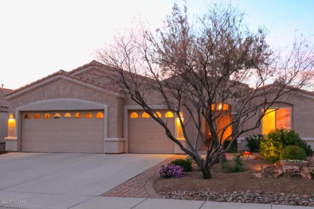 282 W Brinkley Springs Drive, Oro Valley, AZ 85755 (#21822337) :: RJ Homes Team