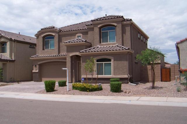 9034 W Grayling Drive, Marana, AZ 85653 (#21822355) :: The KMS Team