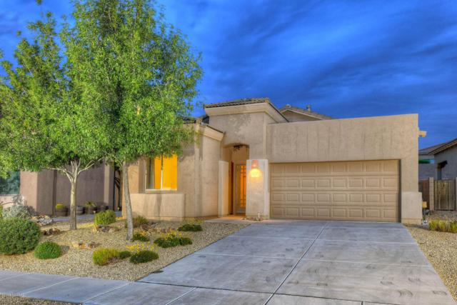10431 S Cutting Horse Drive, Vail, AZ 85641 (#21822442) :: The KMS Team