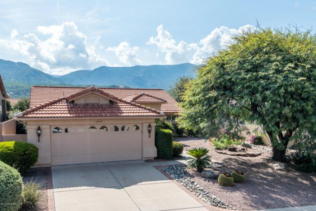 37975 S Mountain Site Drive, Tucson, AZ 85739 (#21822534) :: The Local Real Estate Group | Realty Executives