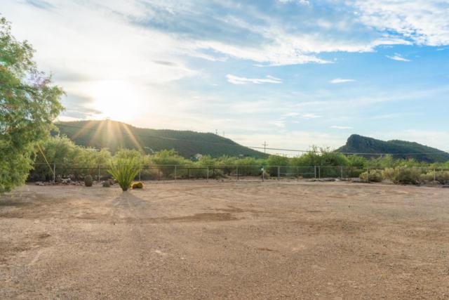 9941 N El Uno Minor, Tucson, AZ 85743 (#21822569) :: The KMS Team