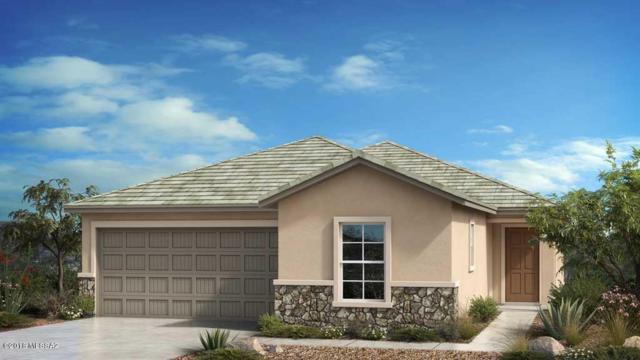8811 N Hardy Preserve Loop, Tucson, AZ 85742 (#21822570) :: The KMS Team