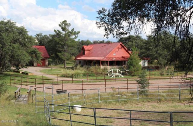 108 Apache Trail, Sonoita, AZ 85637 (#21822577) :: The KMS Team