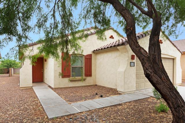 14491 S Camino Larga Vista, Sahuarita, AZ 85629 (#21822628) :: Long Realty Company