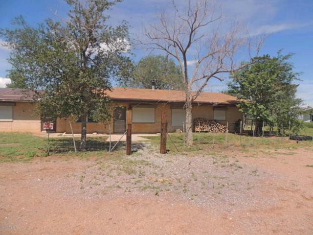 13079 S Dos Cabezas Road, Pearce, AZ 85625 (#21822920) :: Gateway Partners at Realty Executives Tucson Elite