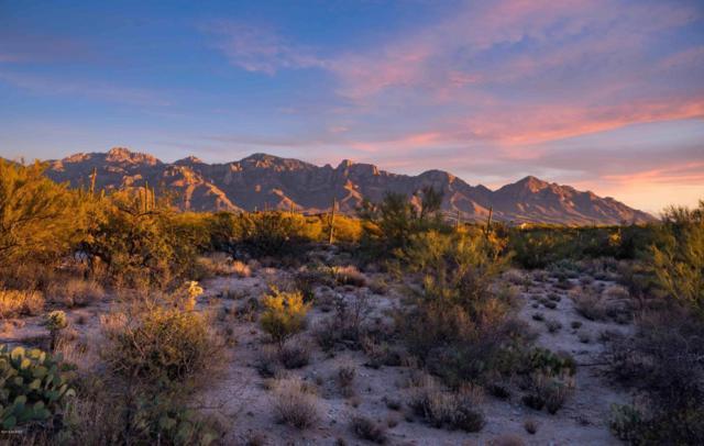 14077 N Flint Peak Drive #599, Oro Valley, AZ 85755 (#21822931) :: Luxury Group - Realty Executives Tucson Elite