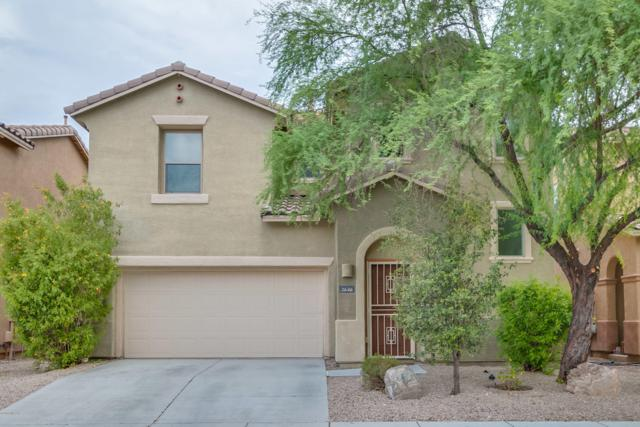 1646 W Gleaming Moon Trail, Tucson, AZ 85704 (#21823116) :: The Josh Berkley Team