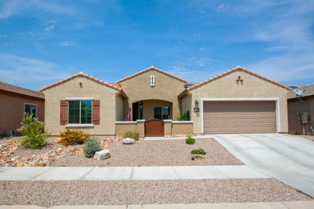 10741 E Sandpiper Run Court, Tucson, AZ 85747 (#21823282) :: The Josh Berkley Team