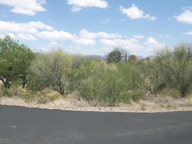 3 Avenida De Herran #152, Tubac, AZ 85640 (#21823299) :: Long Realty Company