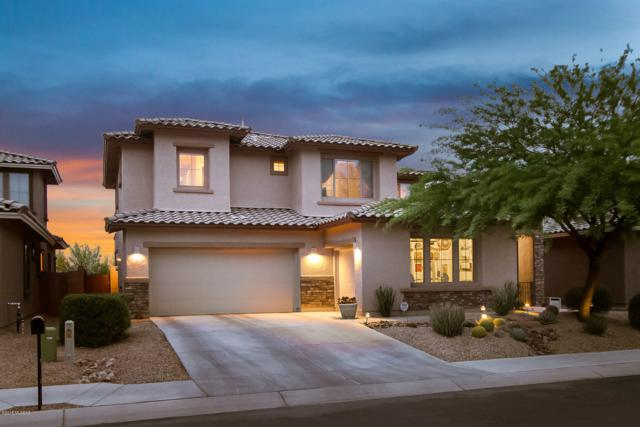 3501 W Tailfeather Drive, Marana, AZ 85658 (#21823319) :: Long Realty Company