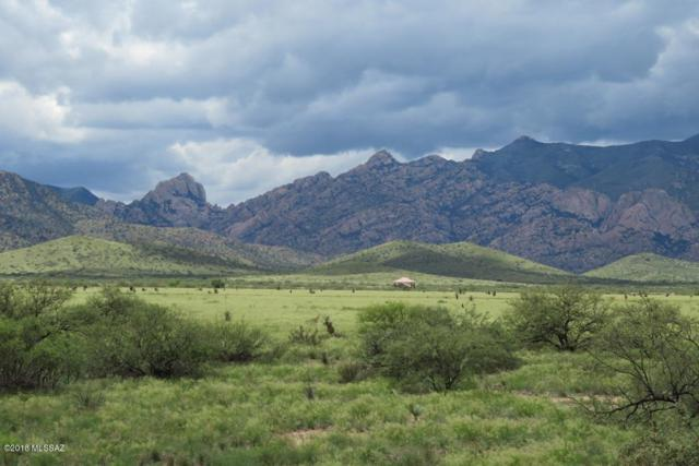688 W Windsong Lane, Pearce, AZ 85625 (#21823509) :: Gateway Partners at Realty Executives Tucson Elite