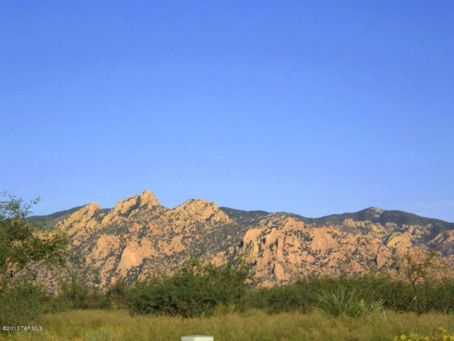 Lot 11 E Roadrunner Trail #11, St. David, AZ 85630 (#21823574) :: The Josh Berkley Team