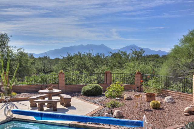 2360 S Camino Del Sol, Green Valley, AZ 85622 (#21823580) :: Long Realty Company