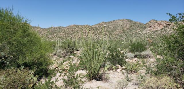14623 N Shaded Stone Place, Oro Valley, AZ 85755 (#21823703) :: Long Realty Company