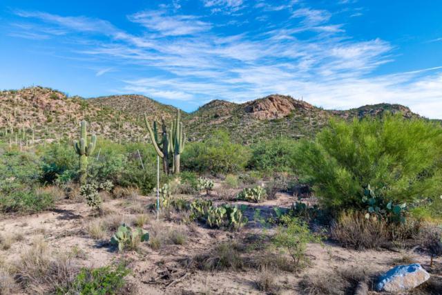 14665 N Granite Peak Place, Oro Valley, AZ 85755 (#21823712) :: Long Realty Company