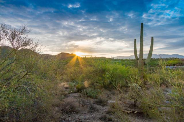 14628 N Granite Peak Place, Oro Valley, AZ 85755 (#21823713) :: Long Realty Company