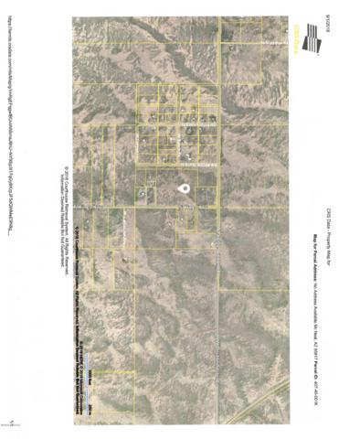N Kings Hwy, Mc Neal, AZ 85617 (#21823778) :: Long Realty - The Vallee Gold Team