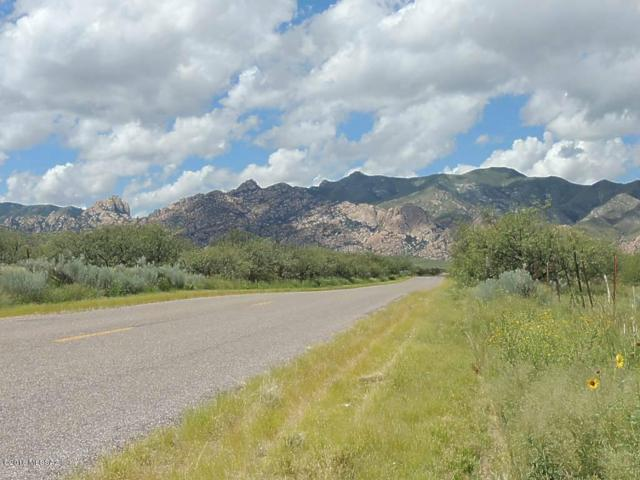 40 Ac On Ironwood Rd Road #1, Cochise, AZ 85606 (#21823802) :: Long Realty - The Vallee Gold Team