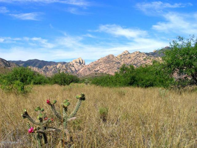 80 Ac On Ironwood & Stronghold Rd Road #1, Cochise, AZ 85606 (#21823803) :: Long Realty - The Vallee Gold Team