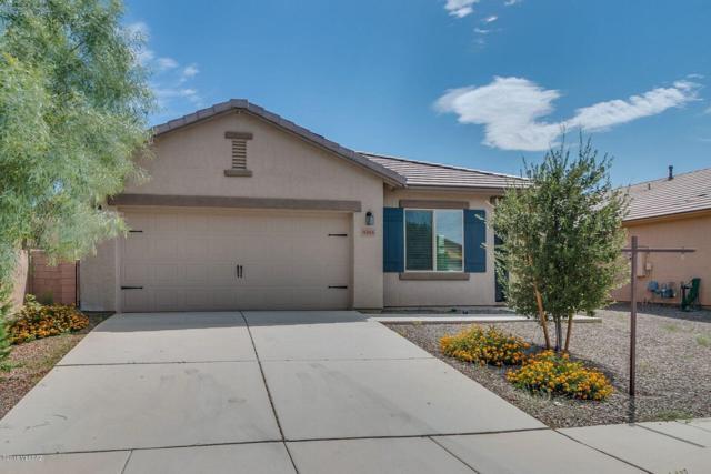 8265 W Razorbill Drive, Tucson, AZ 85757 (#21823804) :: Long Realty Company