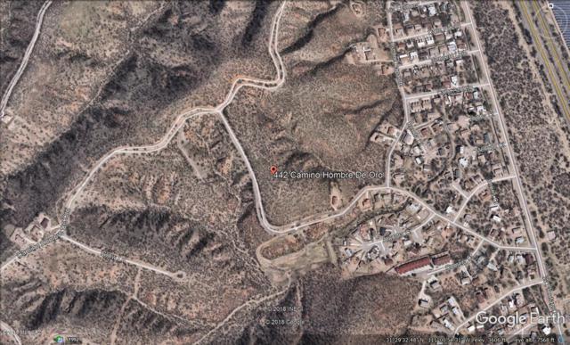 442 Camino Hombre De Oro #46, Rio Rico, AZ 85648 (#21824412) :: Long Realty Company