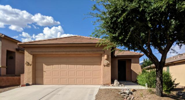 512 W Bazille Way, Green Valley, AZ 85622 (#21824426) :: RJ Homes Team