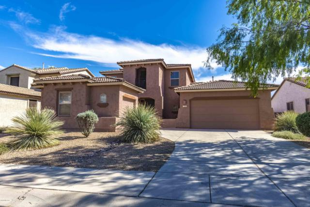 11629 W Emmer Drive, Marana, AZ 85653 (#21824452) :: The KMS Team