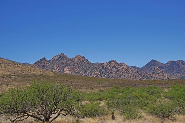 Dragoon Mountain Ranch #88, St. David, AZ 85630 (#21824576) :: The Josh Berkley Team