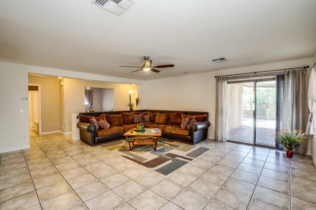 12873 N Desert Olive Drive, Oro Valley, AZ 85755 (#21824621) :: The KMS Team