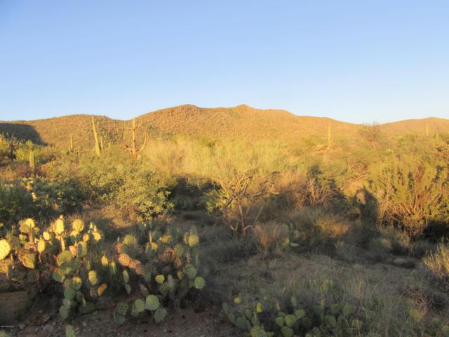 0 S Palo Verde Ranch Road, Catalina, AZ 85739 (#21824673) :: Long Realty Company