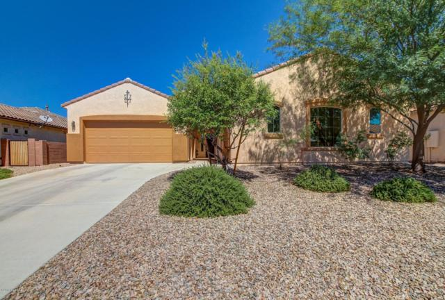 12477 N Wind Runner Parkway, Marana, AZ 85658 (#21824792) :: Long Realty Company