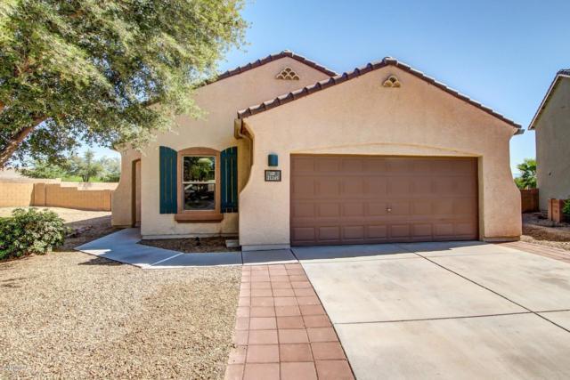 11245 W Harvester Drive, Marana, AZ 85653 (#21824868) :: The Josh Berkley Team