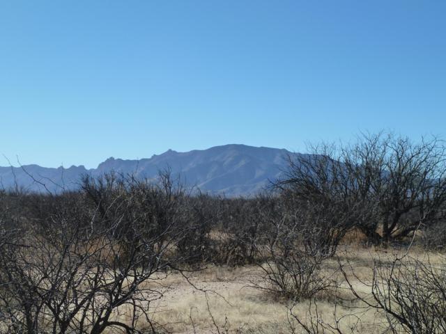 0.86 ac W Eslick Ranch Road #2, Cochise, AZ 85606 (#21824978) :: The KMS Team