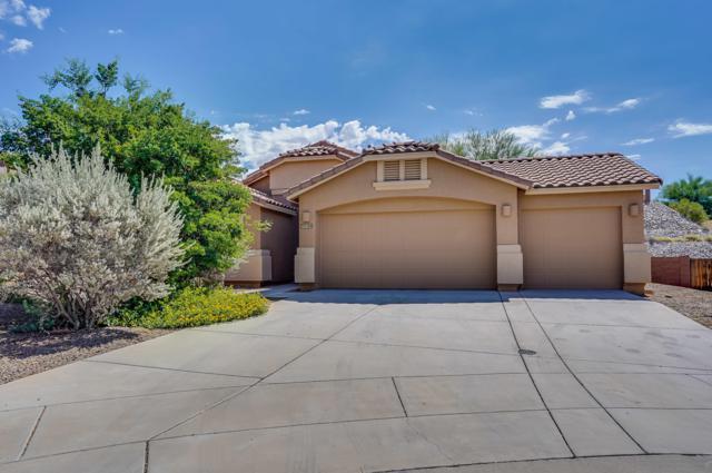 39088 S Running Roses Lane, Tucson, AZ 85739 (#21825007) :: The Josh Berkley Team