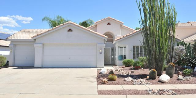 6731 W Alegria Drive, Tucson, AZ 85743 (#21825009) :: The Josh Berkley Team