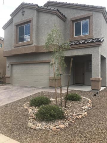 60555 E Flank Strap Drive, Tucson, AZ 85739 (#21825246) :: The Josh Berkley Team