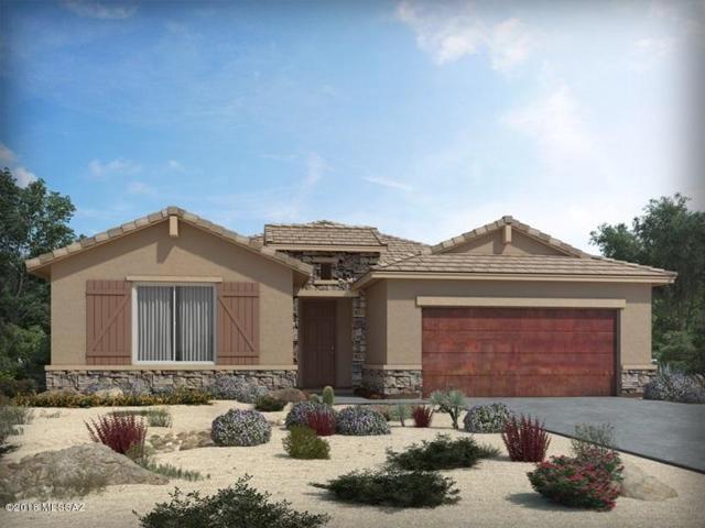 11113 N Gemma Avenue, Oro Valley, AZ 85742 (#21825279) :: The Josh Berkley Team