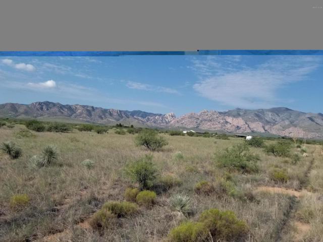 TBD Warner St #6, Cochise, AZ 85606 (#21825284) :: The KMS Team