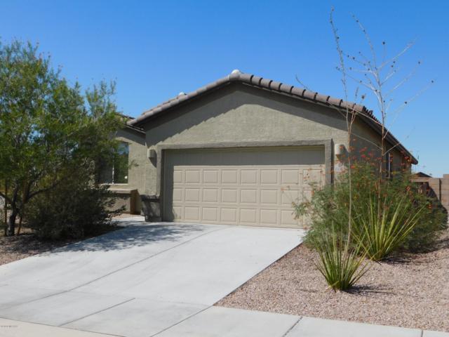 11054 W Brown Ware Street, Marana, AZ 85658 (#21825384) :: The Josh Berkley Team
