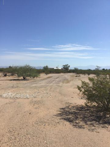 16282 W Snakeweed Road, Marana, AZ 85653 (#21825408) :: The Josh Berkley Team