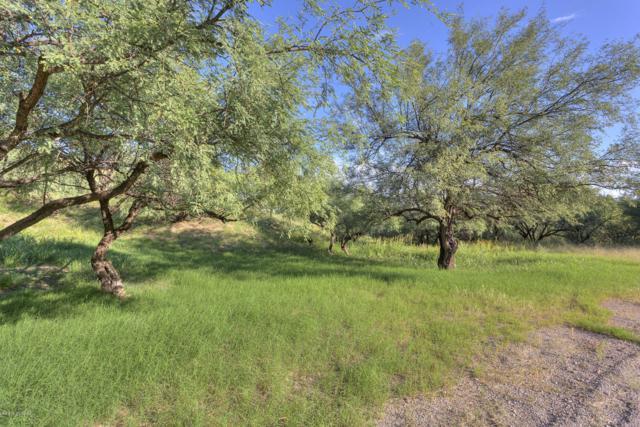 1564 W Camino Campestre A, Nogales, AZ 85621 (#21825418) :: Long Realty Company