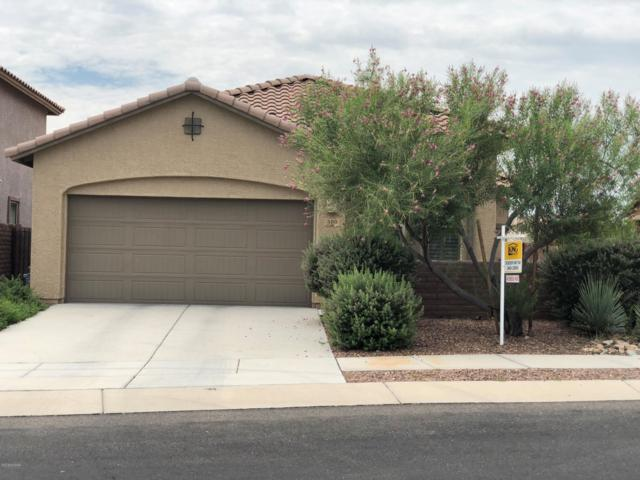 300 E Painted Pottery Place, Oro Valley, AZ 85755 (#21825650) :: eXp Realty