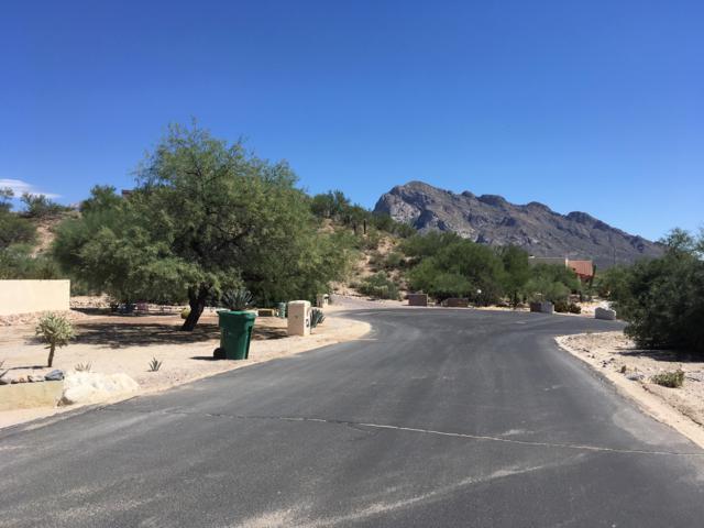 830 W Pomegranate Circle #162, Oro Valley, AZ 85737 (#21825682) :: Luxury Group - Realty Executives Tucson Elite